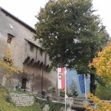 Burgaussenansicht_Herbst